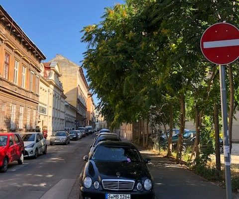 Straat Boedapest 2